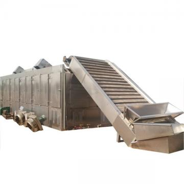 Onion Hot Air Steam Dryer/Mesh Belt Drying Machine