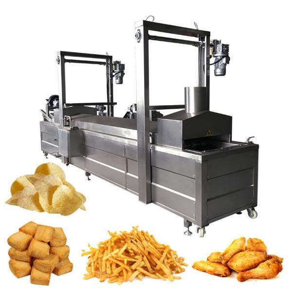 Automatic Nut Frying Machine/Continuous Belt Conveyor Nut Fryer System